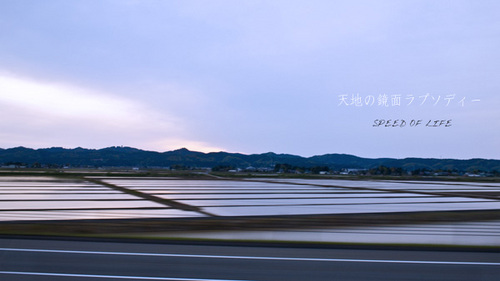 高速バスから眺めた新潟の水田風景