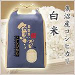 魚沼産お米2kgプレゼント
