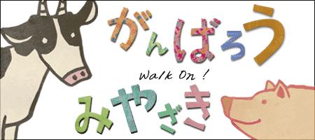 宮崎を応援しよう!